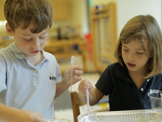 inquiry-based-learning-ib-montessori-preschool